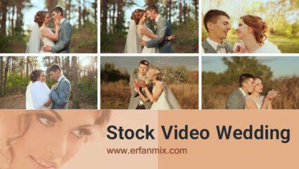فیلم راش عروس و داماد Stock Video Wedding
