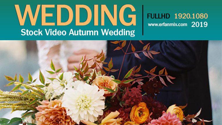 مجموعه استوک فیلم خام عروسی Stock Video Autumn