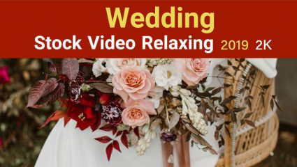 استوک عروسی Stock Video Relaxing Wedding